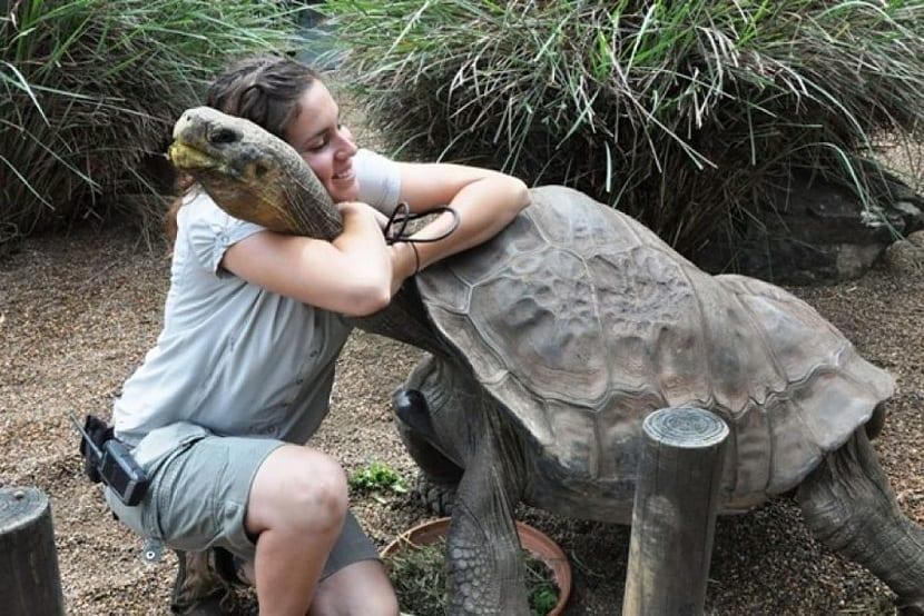 Cuidador de galápago abrazando a una tortuga