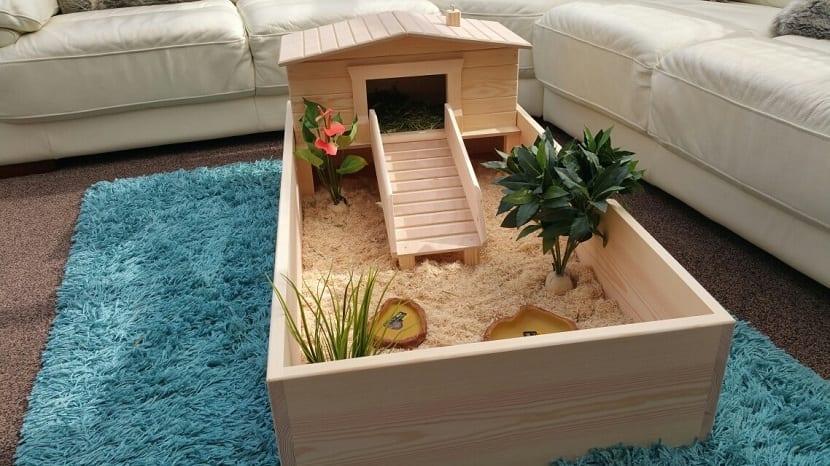 modelos de terrarios