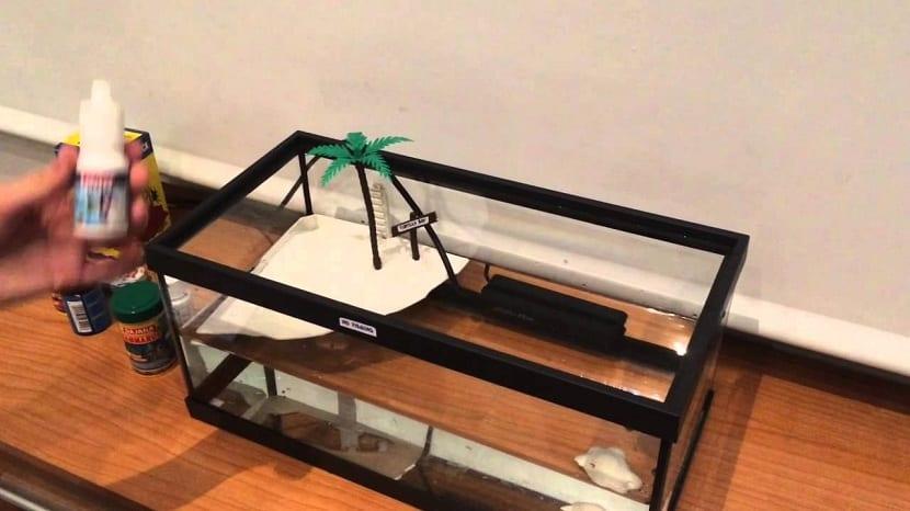 acuaterrario para tortuga